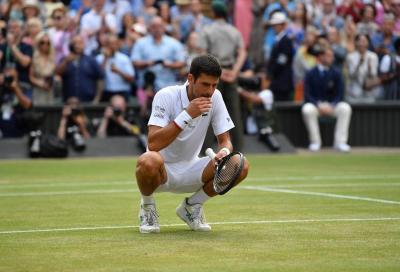 Wimbledon, le previsioni dei bookmakers: Djokovic favorito, Berrettini può sognare